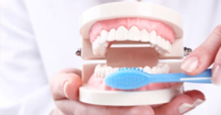 Oral Hygiene Education - Miami or Coral Gable Dental Office